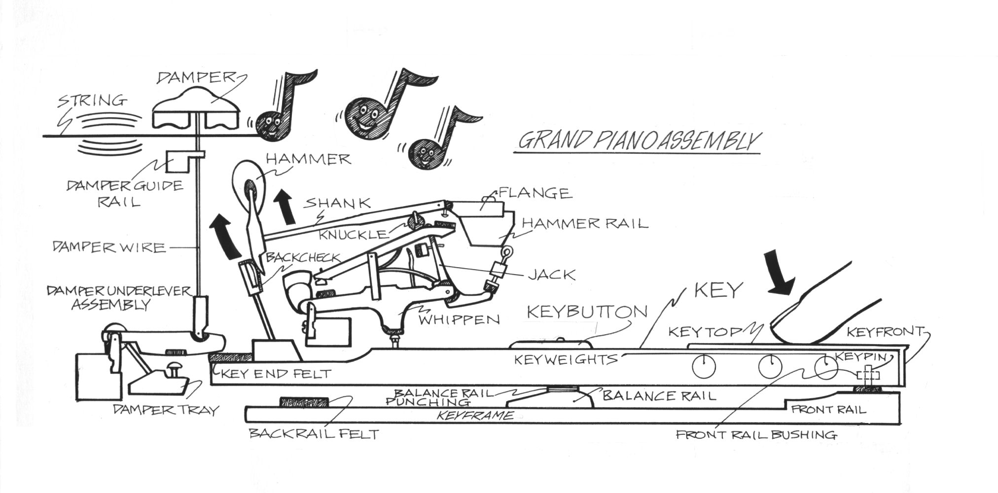 14 How A Piano Works Finders Parts Diagram Kc Grandaction
